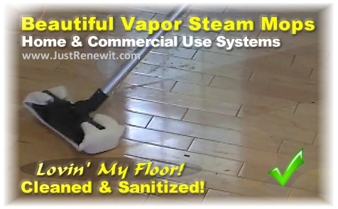 Rh Steam Mopping How To Clean Hardwood Amp Tle Floors